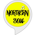 radio schedule button northern soul .png