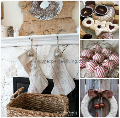 Eco / Unexpected Living Styling
