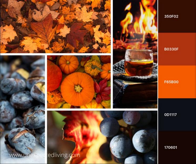 The Colour Season Theory - Autumn