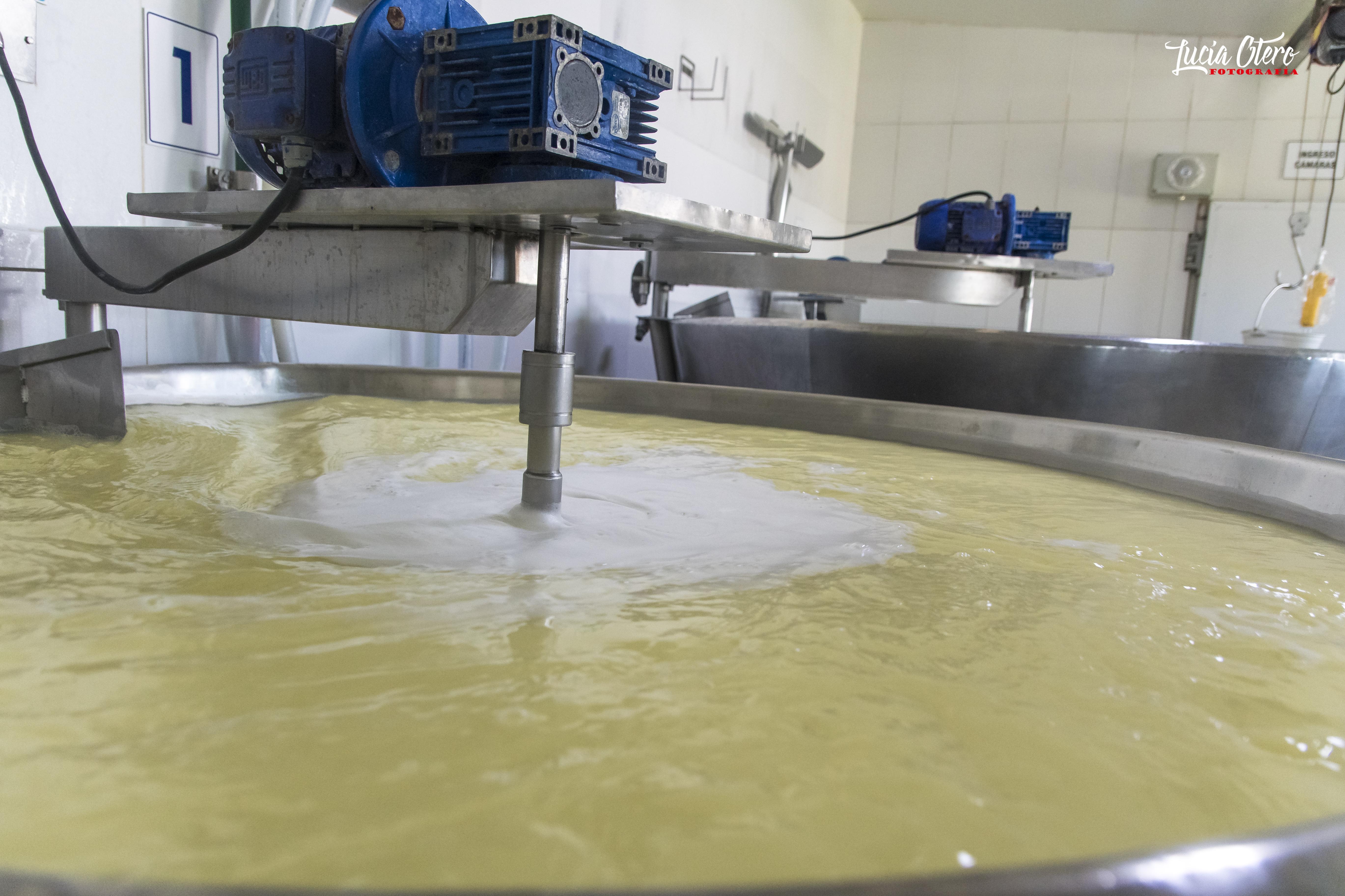 Comienza la elaboración en las tinas