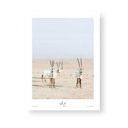 Single Poster Wild by Celine