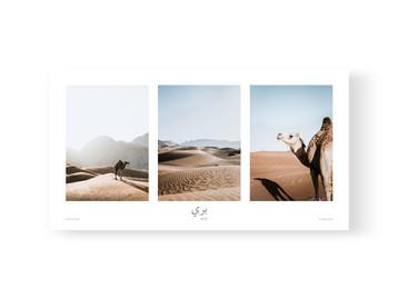 Triptych Wild by Akemi Hoshi