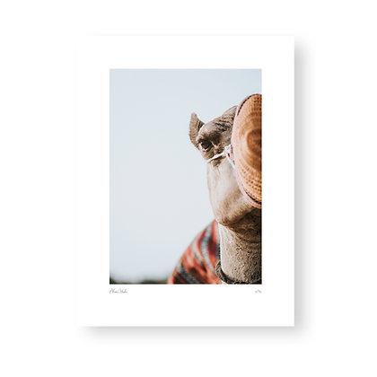 Fine Art Print Camel by Akemi