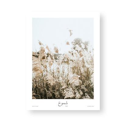 Poster Rise by Akemi