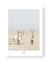 Wild by Celine Grassy