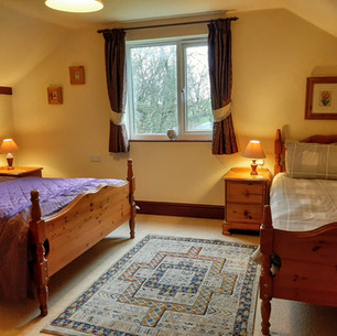 Double room with single
