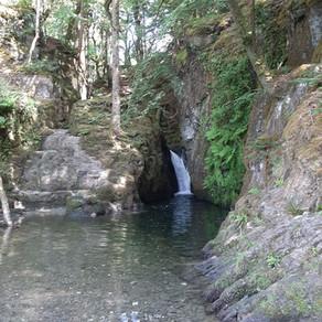Sparkling, Cascading Waterfalls