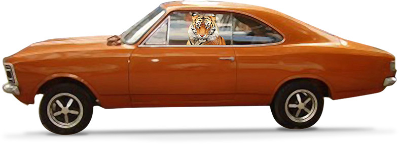 Ponha um tigre em seu carro
