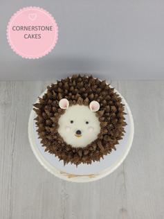 Mr Prickles Cake