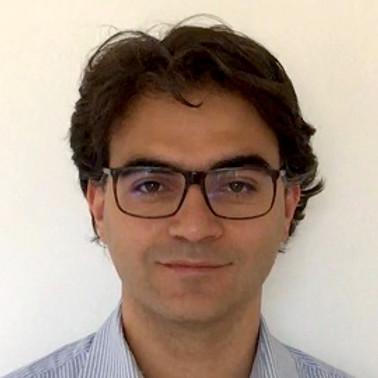 Prof. Vincenzo Vitelli