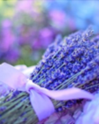 Pic of purple flower dec.2019 issue.jpg