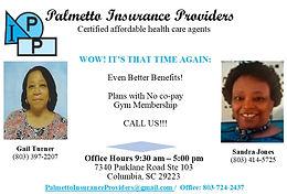 Palmetto Insurance Providers