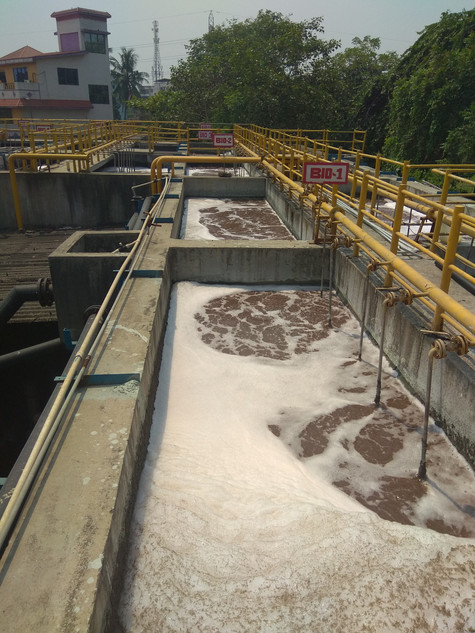 Wastewater purification