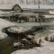 Beaver Pond, January Thaw