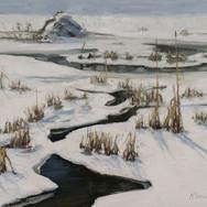Beaver Pond, February