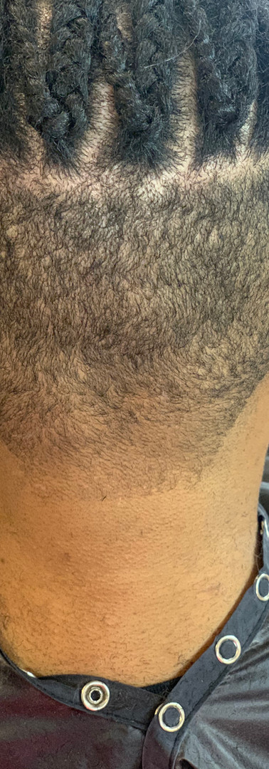 Men's Braids & Cut