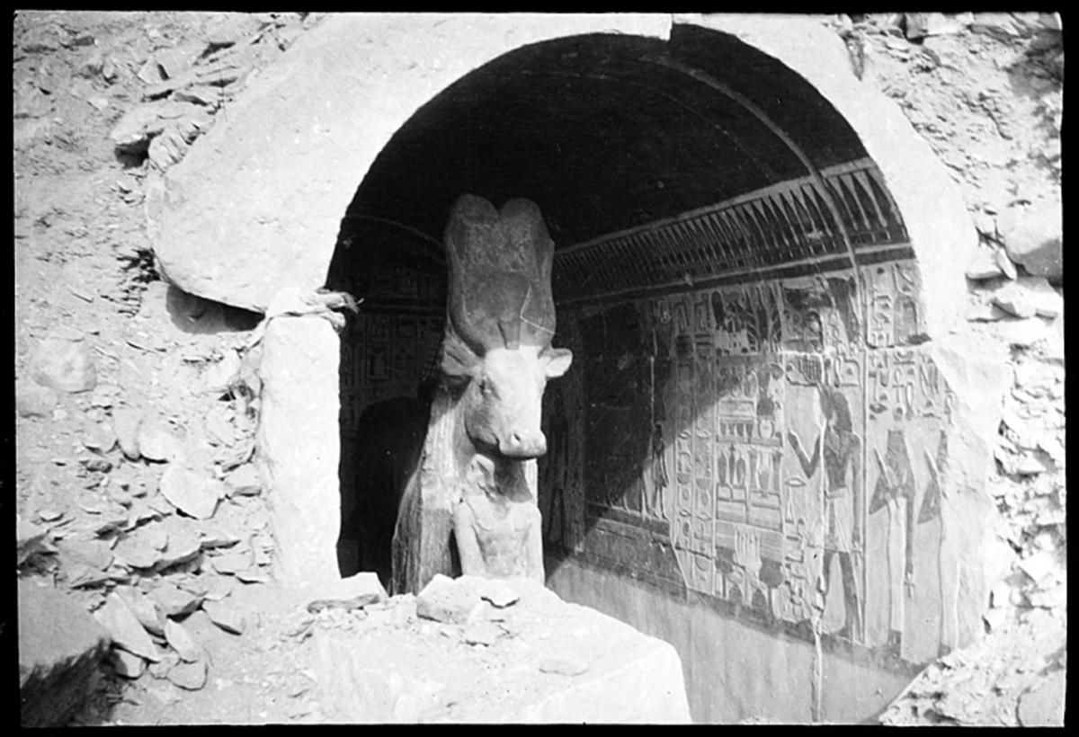 La vache Hathor lors de sa découverte à Deir el-Bahari en 1906, clichés Marguerite Naville © Musée d'art et d'histoire de la Ville de Genève, inv. A 2006-0030-053-031