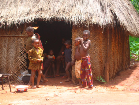 The Practices of the Shaman in Nigeria