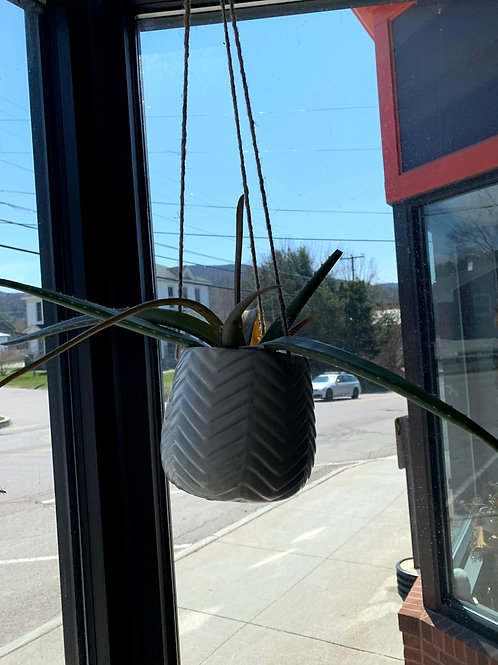 White Hanging Pots - Herringbone Design