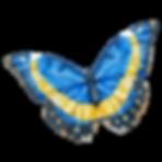 Mariposa acuarela 18