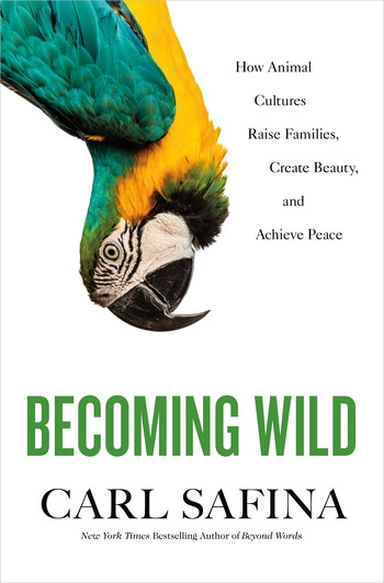 Becoming Wild: How Animal Cultures Raise Families, Create Beauty, and Achieve Peace, by Carl Safina