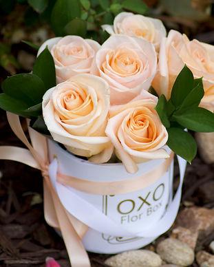 Flor Box OXO _ Signature Small.jpg
