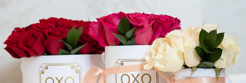 OXO Collection | Classic Roses