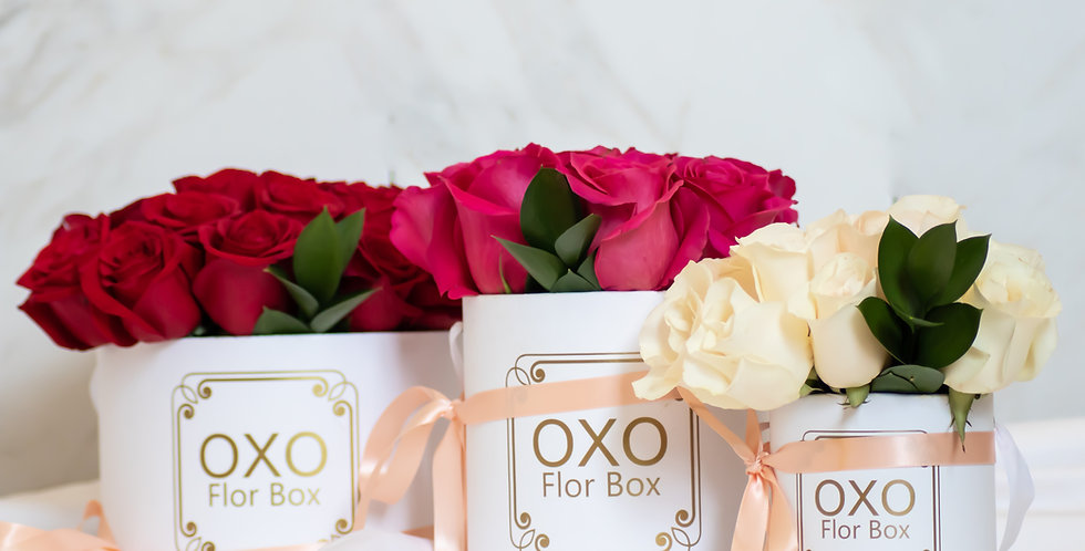 OXO Collection | Classic Roses | 2019