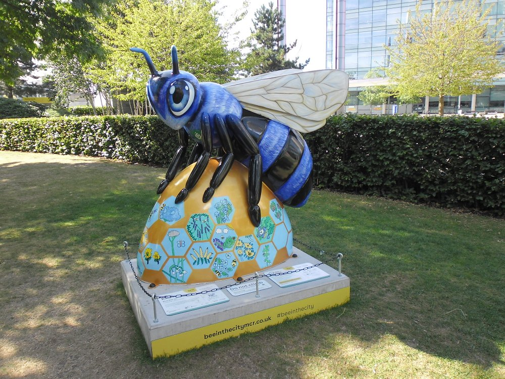 'Blue Peter Bee'