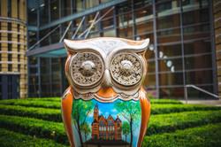 'Oozells Owl'