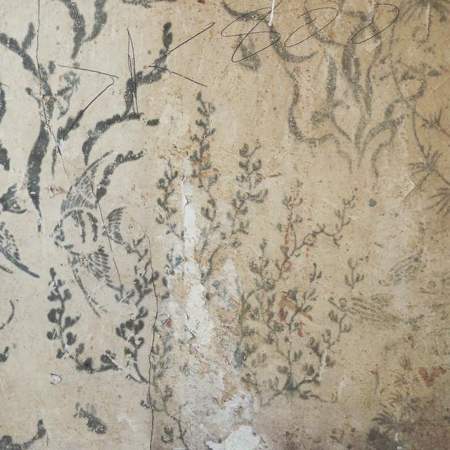 #Hidden under my #1980s #kitchencupboard #underneath the #wallpaper is a #handPainted #underWater #scene #seaLife.jpg