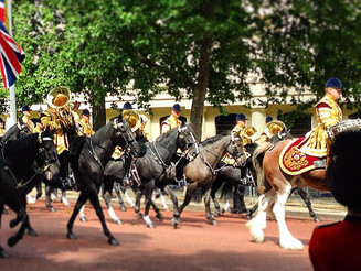 #RoyalGuards #Parade #BuckinghamPalace #StJamesPark #stuckonthewrongside