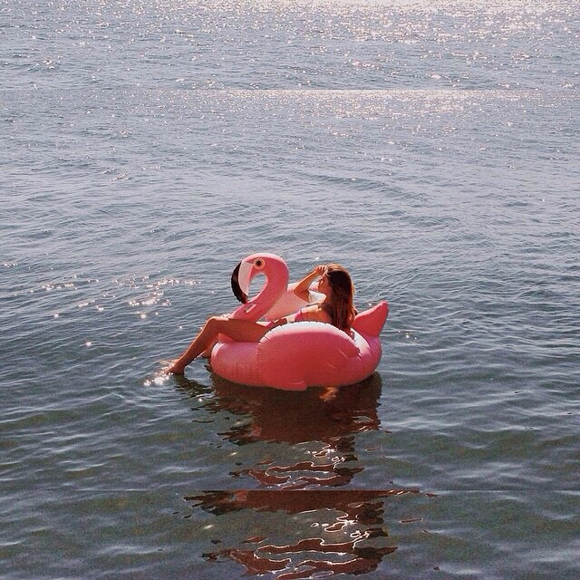 Instagram - #Pink #inflatable #blowup #flamingo.jpg