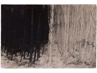 #Dark to #Light. #MasaoYamamoto, #Japan