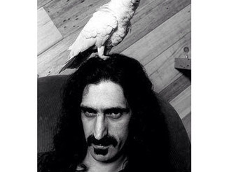 #FrankZappa was an #American #musician, #composer, #producer, and #writer  #parrot on his #head #bla