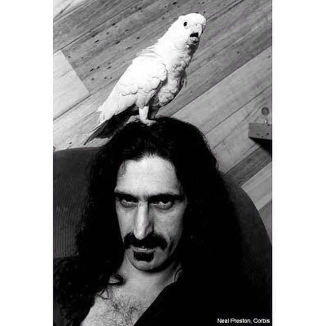 Instagram - #FrankZappa was an #American #musician, #composer, #producer, and #w