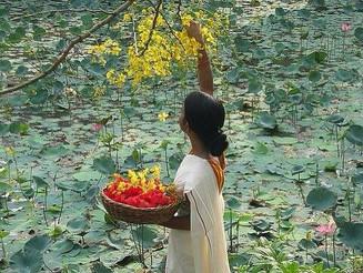 #Beautiful #India #Kerala. #WhiteSari holding a #basketofflowers. Looks like a #Monet #Painting #Wat