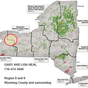 DEC Map - Neal_edited.jpg