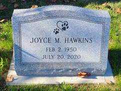 Hawkins.jpg