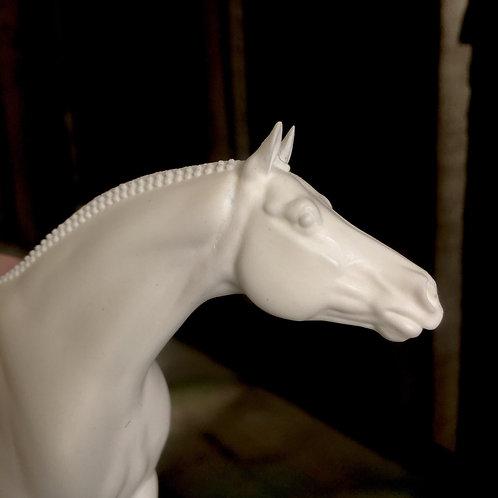 Curio Scale - Bennett - American Large Pony Hunter