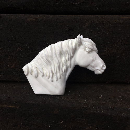 Tunnock - Highland Pony Headstudy