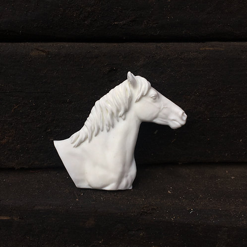 Rusk - Exmoor Pony Headstudy