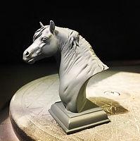 Kim Murray and Paisley the Pony
