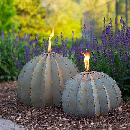 Small Barrel Cactus Torch