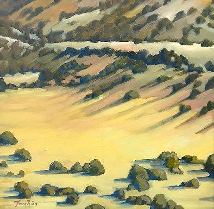 Spotted Hills near Cochiti Pueblo