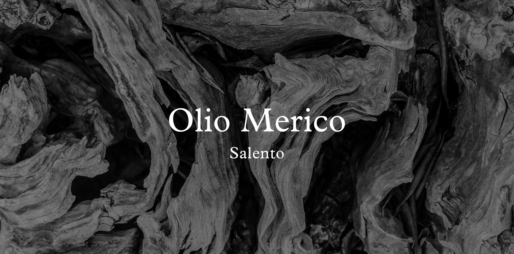 OLIOMERICO_CASE_STUDY-02