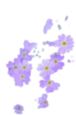 purple flower cut.png