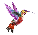 hummingbird purple.png