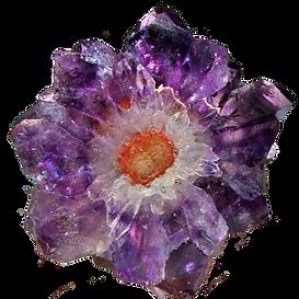 crystalflower cut.png