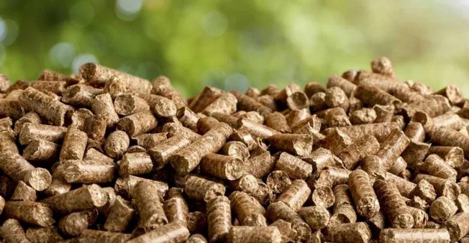 pellets-for-stoves-780x405.webp